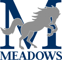 Meadows School